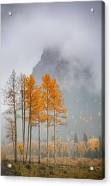 Standing In The Rain Acrylic Print