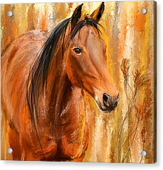 Standing Regally- Bay Horse Paintings Acrylic Print by Lourry Legarde