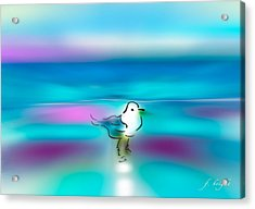 Acrylic Print featuring the mixed media Standing Seagull by Frank Bright