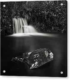 Acrylic Print featuring the photograph Standing Still #3 by Antonio Jorge Nunes