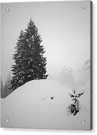 Acrylic Print featuring the photograph Sentinels #2 by Antonio Jorge Nunes
