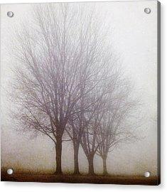 Standing Still Acrylic Print by Irene Suchocki
