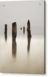 Standing Still Acrylic Print by Mark Alder