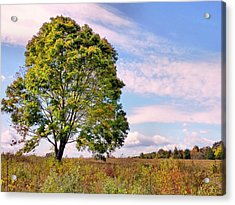 Acrylic Print featuring the photograph Standing Tall by Janice Drew