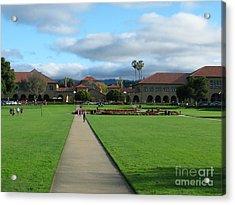 Stanford University Acrylic Print by Mini Arora