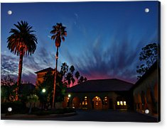 Stanford University Quad Sunset Acrylic Print by Scott McGuire