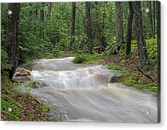 Stanley Brook In Acadia National Park Acrylic Print by Juergen Roth