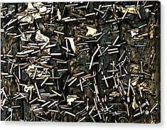 Acrylic Print featuring the photograph Staples On Wood by Crystal Hoeveler