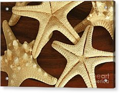 Star Fish Acrylic Print by Inspired Nature Photography Fine Art Photography