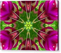Star Fuchsia 1 Mandala Acrylic Print