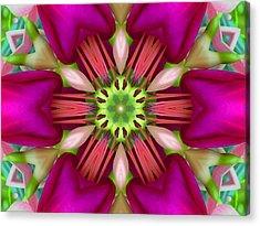 Star Fuchsia 3 Mandala Acrylic Print