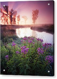 Star In The Fog Acrylic Print by Ray Mathis