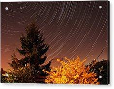 Star Trails Acrylic Print by Jay Harrison
