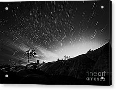 Star Trails And Trees Mono Acrylic Print