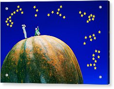 Acrylic Print featuring the photograph Star Watching On Pumpkin Food Physics by Paul Ge
