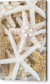 Starfish 2 Acrylic Print