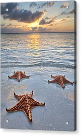 Starfish Beach Sunset Acrylic Print