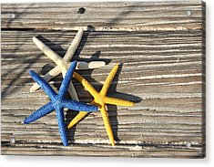 Acrylic Print featuring the photograph Starfish by Elizabeth Budd