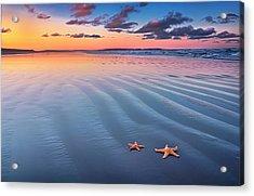 Starfish On Sand Acrylic Print by Joe Regan