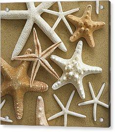 Starfish On Sand Acrylic Print