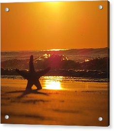 Acrylic Print featuring the photograph Starfish Sunrise by Nikki McInnes