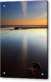 Starfish Sunset Acrylic Print by Mike  Dawson