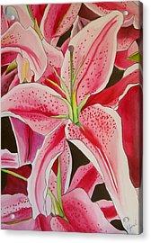 Stargazer Lily Acrylic Print by Sacha Grossel