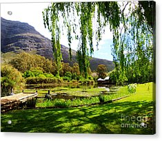 Stark Conde Wine Estate Stellenbosch South Africa Acrylic Print by Charl Bruwer