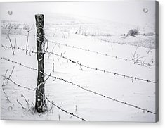 Stark Realities Of Winter Acrylic Print by John Haldane
