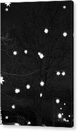 Starlight Acrylic Print by Barbara Bardzik