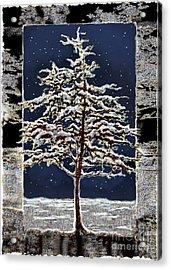Starlight Acrylic Print by Ursula Freer