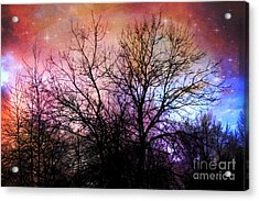 Acrylic Print featuring the photograph Starry Night by Sylvia Cook