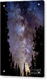 Starry Night -  The Milky Way Acrylic Print by Douglas Taylor