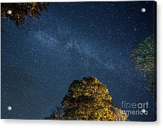 Acrylic Print featuring the photograph Starry Skies by Martin Konopacki