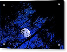 Acrylic Print featuring the photograph Starry Starry Night by Mike Flynn