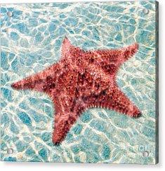 Stars In The Water Acrylic Print by Jon Neidert