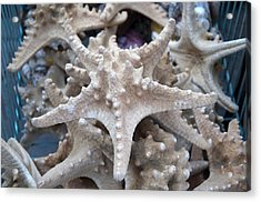 Stars Of The Timeless Sea Acrylic Print