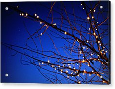 Acrylic Print featuring the photograph Stars On Branches by Aurelio Zucco