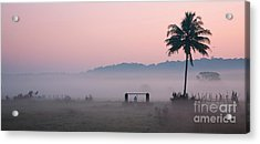 Start Acrylic Print by Dattaram Gawade