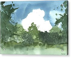 Acrylic Print featuring the painting State Park Plein Air 7-20-13 by Sean Seal