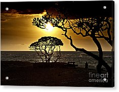 State Park Sunset Acrylic Print by Karl Voss