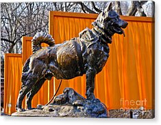 Statue Of Balto In Nyc Central Park Acrylic Print