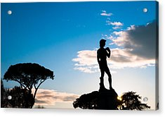 Acrylic Print featuring the photograph Statue Of David by Avian Resources