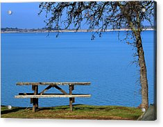Acrylic Print featuring the photograph Stay A While by Rima Biswas