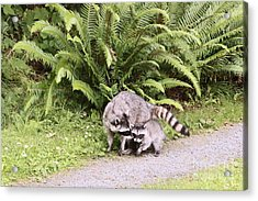 Stay Close And Run Fast  Acrylic Print by Kym Backland