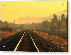 Acrylic Print featuring the photograph Stay On Track by Lynn Hopwood