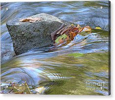 Acrylic Print featuring the photograph Steadfast by Jane Ford