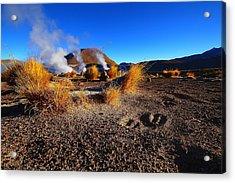 Steaming Desert 2 Acrylic Print by FireFlux Studios