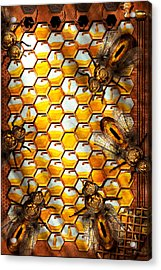 Steampunk - Apiary - The Hive Acrylic Print by Mike Savad