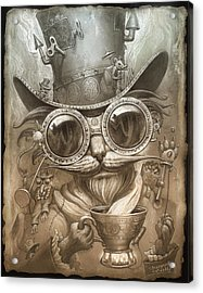 Steampunk Cat Acrylic Print by Jeff Haynie